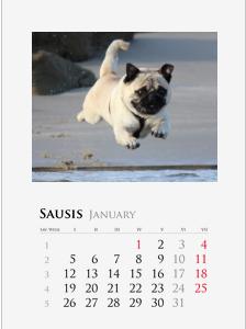 Sieninis vartomas fotokalendorius A4, A3 formatu