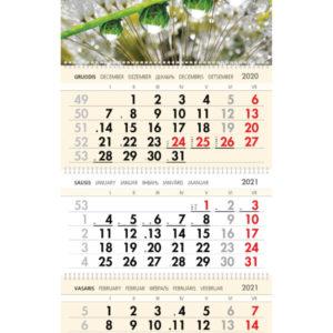 Trijų dalių sieninis kalendorius BORUŽĖS
