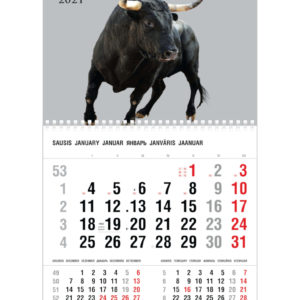 Vienos dalies sieninis kalendorius JAUTIS
