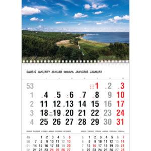 Vienos dalies sieninis kalendorius NIDA
