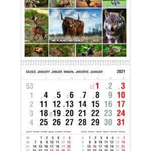 Vienos dalies sieninis kalendorius ŽVĖRELIAI