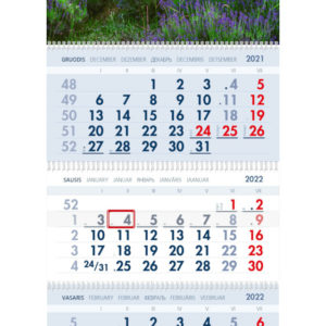 Trijų dalių sieninis kalendorius LEVANDOS