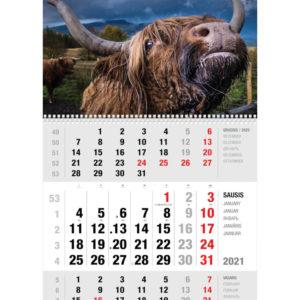 Ekonomiškas sieninis trijų dalių kalendorius JAUTIS