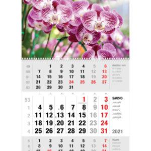 Ekonomiškas sieninis trijų dalių kalendorius ORCHIDĖJOS