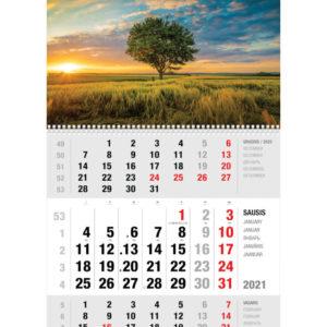 Ekonomiškas sieninis trijų dalių kalendorius VASAROS VAKARAS
