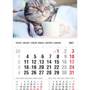 Vienos dalies sieninis kalendorius SUNKUS RYTAS
