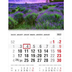 Vienos dalies sieninis kalendorius LEVANDOS